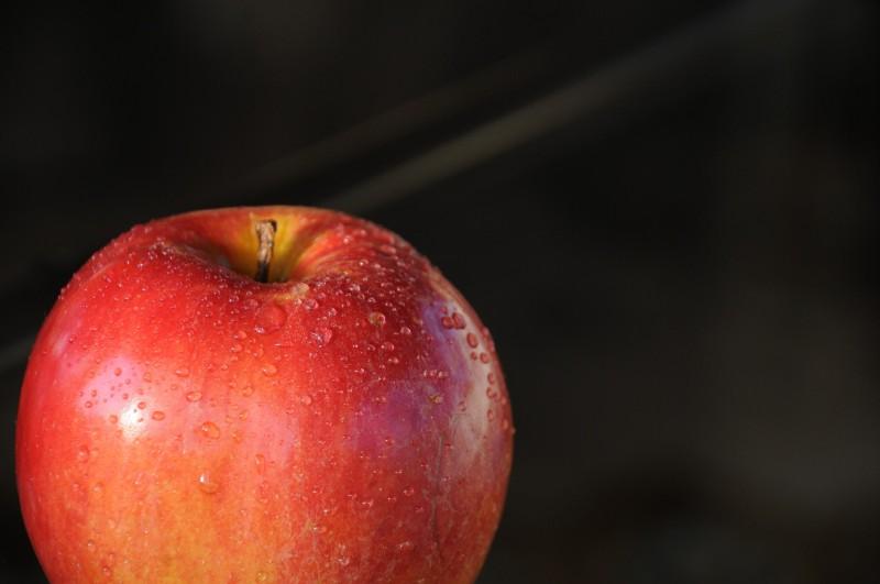 Frugtkurven.dk - gode løsninger til dig